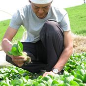 Vol.1:松原 克浩「農業」と出会うまで